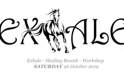 Join Us For Our Next Equine Assisted Workshop